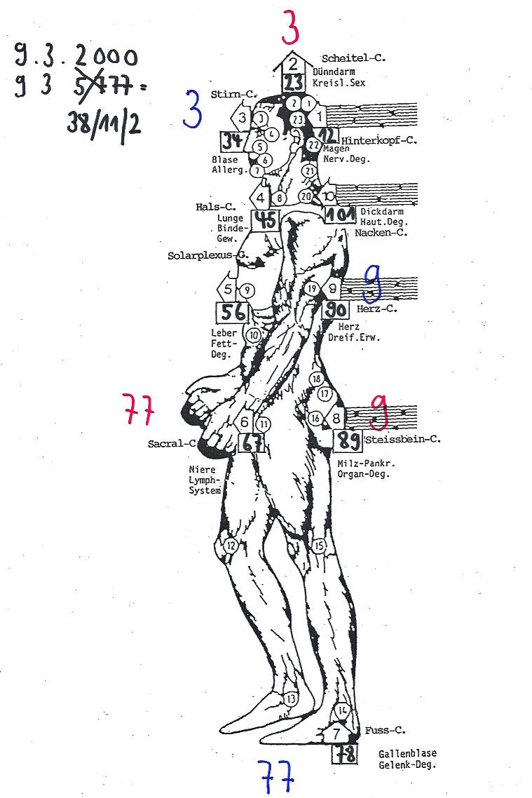 Ungewöhnlich Menschliches Körperbild Für Kinder Bilder - Anatomie ...